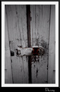 Cartoon: Barn Door (small) by Krinisty tagged barn,door,yard,lock,key,wood,art,photography,krinisty,white,paint,chipped,weather,happy