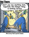Cartoon: budgie (small) by George tagged budgie