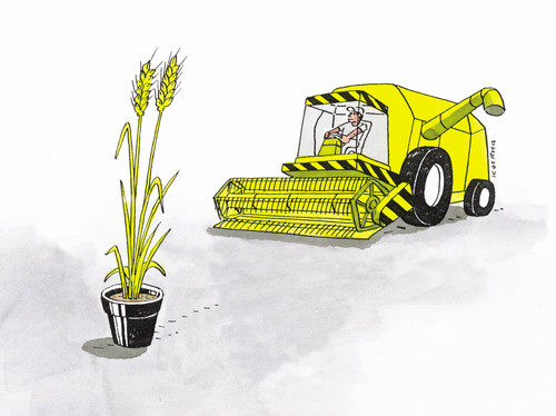 Cartoon: 64-hn (medium) by kotrha tagged harvest,summer,yield,harvester