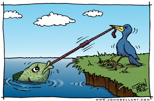 Cartoon: The Struggle (medium) by JohnBellArt tagged struggle,bird,fish,worm,tug,pull,equal,desires,power,victim
