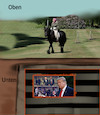 Cartoon: unterschied (small) by ab tagged usa,trump,bunker,uk,queen