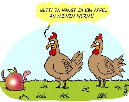 Cartoon hühner medium by karsten tagged natur tiere ernährung