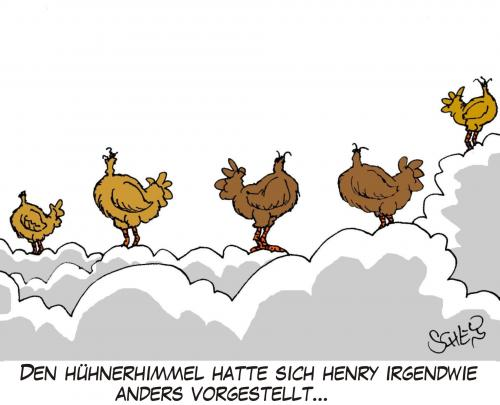 Cartoon: Hühnerhimmel (medium) by Karsten tagged tiere,religion