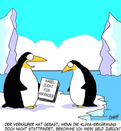 Pinguin Auf Englisch