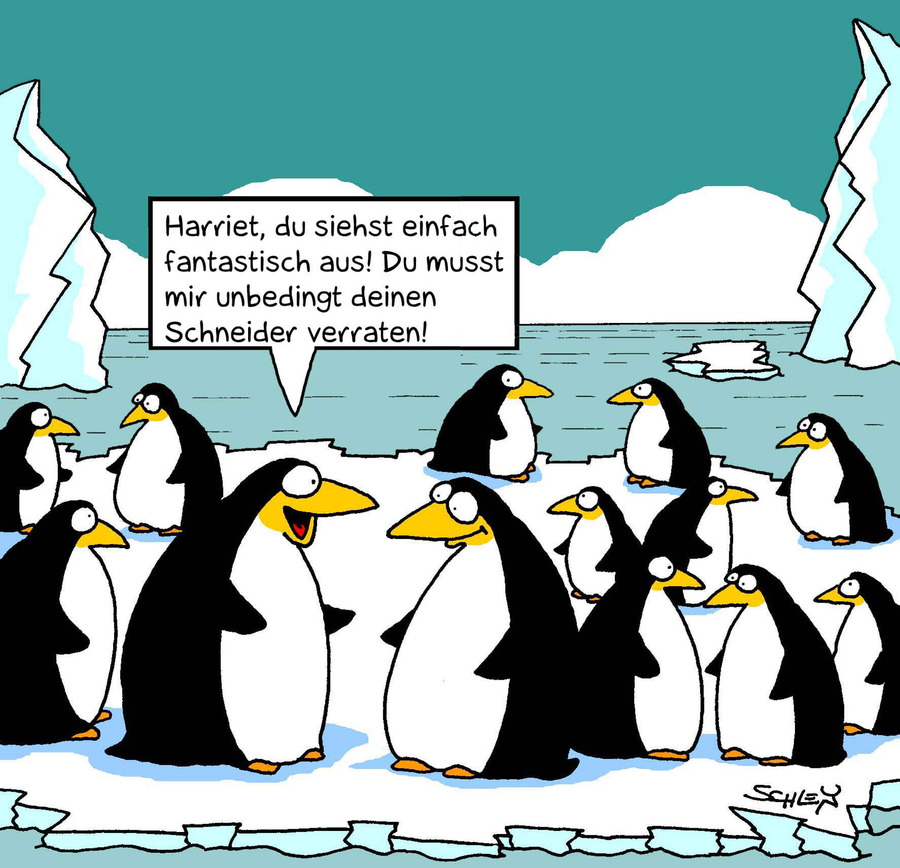 Cartoon: Mode (large) by Karsten tagged frauen,gesellschaft,mode,fashion,designerkleidung,wirtschaft,geld,bekleidung,frauen,gesellschaft,mode,fashion,designerkleidung,wirtschaft,geld,bekleidung,pinguine,tiere,beauty