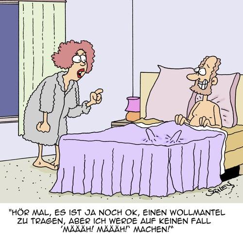Tierisch Im Bett Von Karsten Liebe Cartoon Toonpool