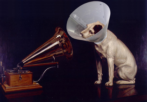 Cartoon: Masters voice (medium) by tanerbey tagged emblem,trademark,phonograph,dog,voice,master