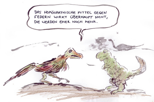 Cartoon: Archeopteryx (medium) by Bernd Zeller tagged archeopteryx,dinosarier