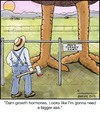 Cartoon: Growth Hormone (small) by noodles tagged growth,hormone,axe,farmer,turkey,thanksgiving