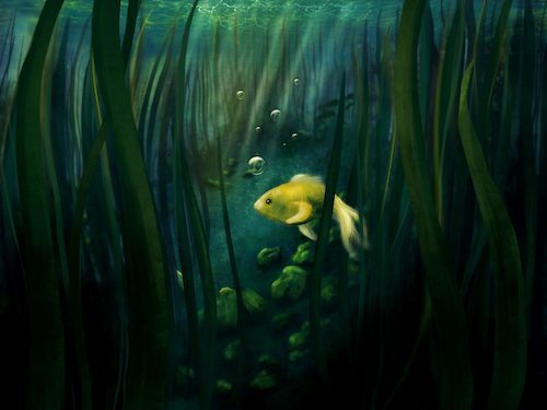 Cartoon: Litte yellow fish (medium) by alesza tagged fish,yellow,digital,painting,illustration,procreate,ipadart,artwork