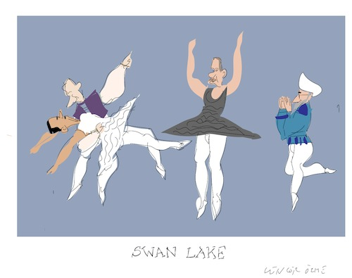 Cartoon: Swan Lake (medium) by gungor tagged middle,east