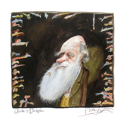 Cartoon: Charles Darwin (medium) by Peter Bauer tagged bauer,peter,evolution,darwin,charles