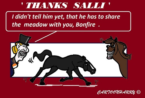 Cartoon: Goodbye Salinero (medium) by cartoonharry tagged goodbye,salinero,bonfire,ankyvangrunsven,horses,olympics,champion,cartoon,cartoonist,cartoonharry,dutch,toonpool