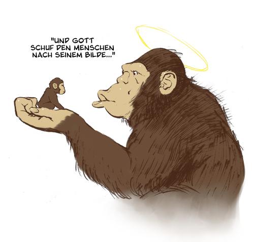 Schöpfung Und Evolution