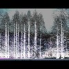 Cartoon: MH - The Ice Queens Forest (small) by MoArt Rotterdam tagged rotterdam,trees,bomen,bos,woud,forest,wood,ijskoningin,icequeen,ingang,entrance,cold,koud,nolove,geenliefde