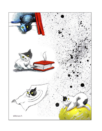Cartoon: Katzen Skizzen (medium) by Mehmet Karaman tagged kazten