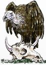 Cartoon: Vulture (small) by Bob Row tagged birds vulture financial speculators