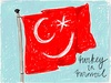 Cartoon: Turkey in turmoil (small) by Roodkapje tagged istanbul