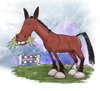 Cartoon: Leo (small) by east coast cartoons tagged cartoon,horses,horse