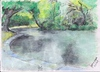 Cartoon: Duck Pond (small) by jjjerk tagged duck pond saint annes park dublin nature trees green water paving reflection