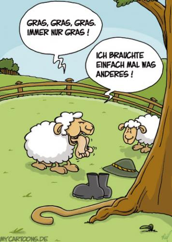Cartoon: Schafsfutter (medium) by mil tagged schaf,hunger,ernährung,mil,