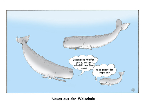 Cartoon: Walfang II (medium) by Erwin Pischel tagged pischel,fischerei,walschule,meeressaeuger,bartenwale,zahnwale,ozean,meer,großwale,jagd,meerestiere,biodiversitaet,artenschutz,tierschutz,schutzzone,walfangkommission,internationale,iwc,walfangverbot,iceland,island,norway,norwegen,japan,walfang,wal,wale