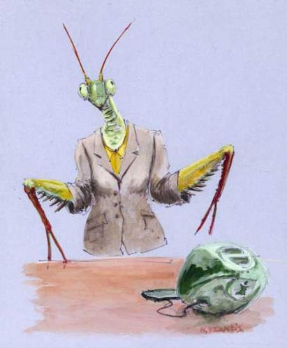Cartoon: mantis (medium) by neophron tagged satire,caricature,animals,tiere