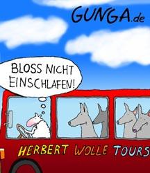 Cartoon: Herbert Wolle (medium) by Gunga tagged herbert,wolle