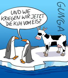 Cartoon: Kuh vom Eis (medium) by Gunga tagged kuh,vom,eis