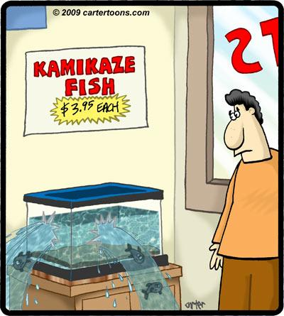 Cartoon: Kamikaze fish (medium) by cartertoons tagged pet,shop,fish,tank,kamikaze,store,water