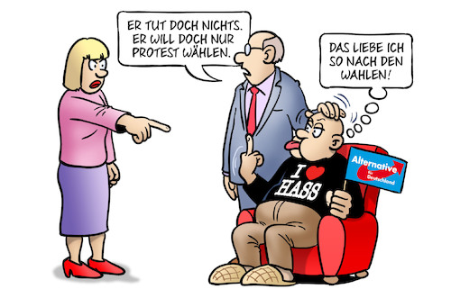 Afd Protestwähler
