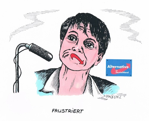Frustrierte Petry