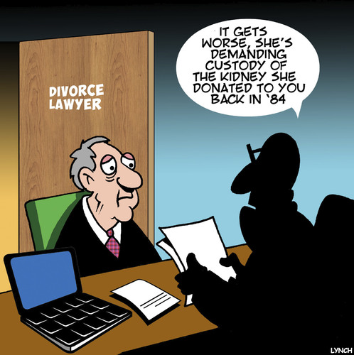 Cartoon: Divorce lawyer (medium) by toons tagged organ,donors,divorce,lawyers,kidney,donor,settlement,organ,donors,divorce,lawyers,kidney,donor,settlement
