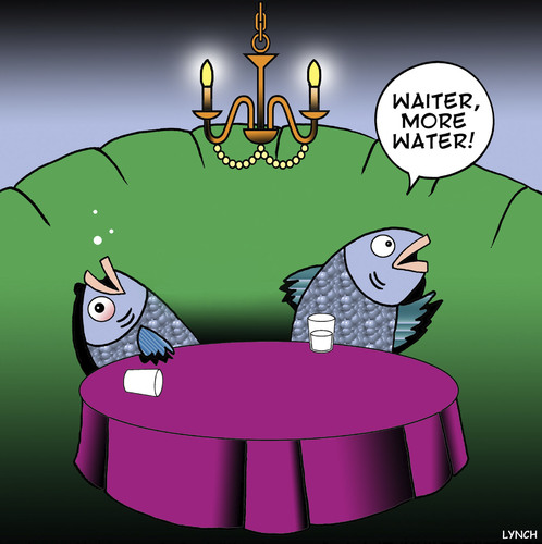 More water von toons medien kultur cartoon toonpool for Fish out of water restaurant