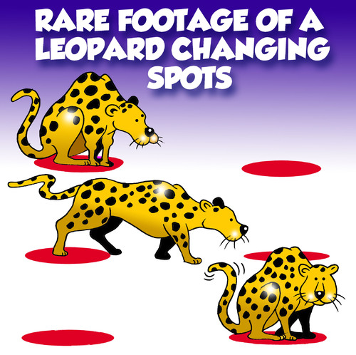 Cartoon: rare footage (medium) by toons tagged leopard,changing,your,spots,cats,felines,habits,africa,footage,rare