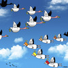 Cartoon: flying by (small) by toons tagged angels,heaven,birds,flying,in,formation,geese,fly,south,for,the,winter,god,wings,religion