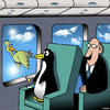 Cartoon: Flying penguin (small) by toons tagged penguins,first,class,airlines,flying