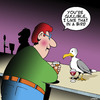 Cartoon: Gullible (small) by toons tagged gullible,seagulls,pick,up,lines,bars,romance,animals,birdlife