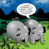 Cartoon: Hannibal (small) by toons tagged pays,peanuts,elephants,hannibal