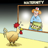 Cartoon: Nervous dad (small) by toons tagged chickens,maternity,eggs,babies,fatherhood,dads