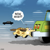 Cartoon: Now what (small) by toons tagged dog,chasing,cars,dogs