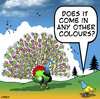 Cartoon: other colours (small) by toons tagged peacocks,courting,dating,fussy