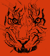 Cartoon: Angry Pussy (small) by Toonstalk tagged tiger,cat,wildlife,africa,siberia,protected,circus,predator,feline,mammal,hunter
