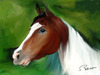 Cartoon: My horses (small) by semra akbulut tagged horse,at,semra,akbulut