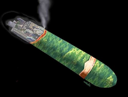 Cartoon: natural cigar (medium) by Medi Belortaja tagged natural,cigar,forest,environment,nature