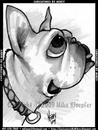 Cartoon: Mikey_MBulldogBoullion (small) by mikeyzart tagged bulldog,dog,cartoon,caricature,marker