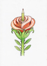 Cartoon: Rose (small) by ercan baysal tagged birth,pen,rose,art,artist,seed,ercan,illustration,ercanbaysal,grafik,humor