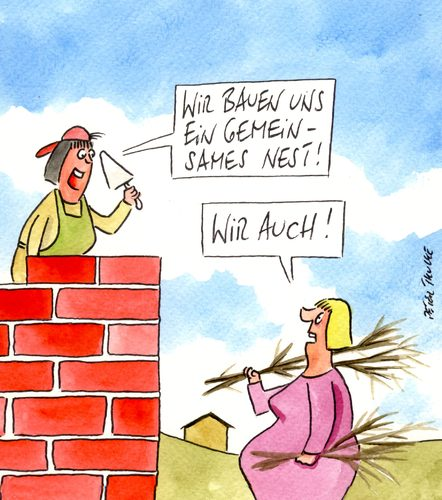 Haus bauen comic  nest von Peter Thulke | Natur Cartoon | TOONPOOL