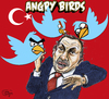 Angry birds Turkey