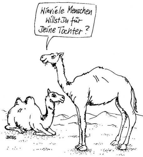 Mitt medium by besscartoon tagged kamel heiraten hochzeit